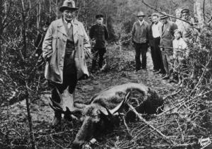 Göring Schlesien Jagd