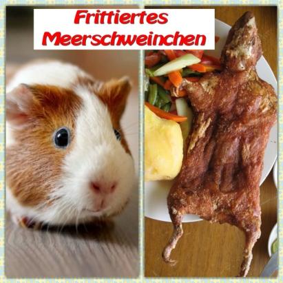 frittiertes_meerschweinchen
